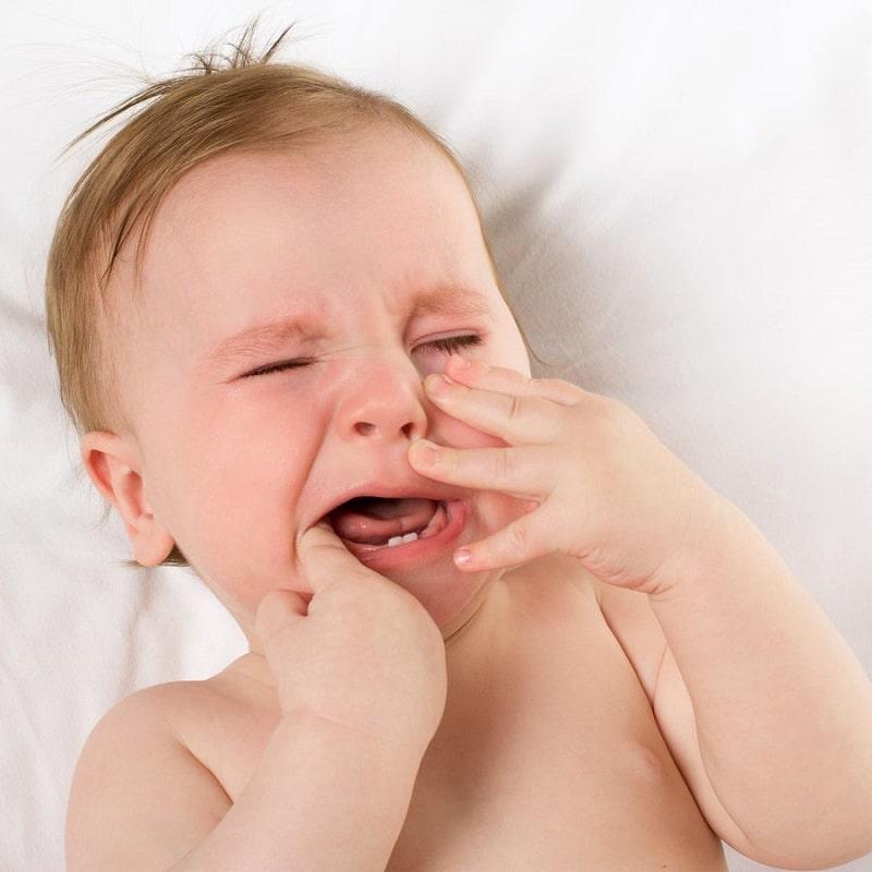 Bé 8 tháng chưa mọc răng có sao không? Việc mọc nhiều răng cùng một lúc sẽ khiến bé khó chịu và quấy khóc
