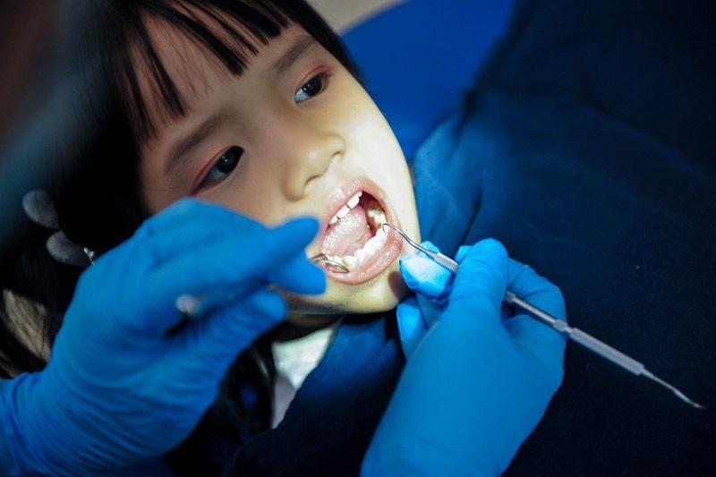 Mất răng sữa sớm làm giảm khả năng nhai thức ăn của trẻ