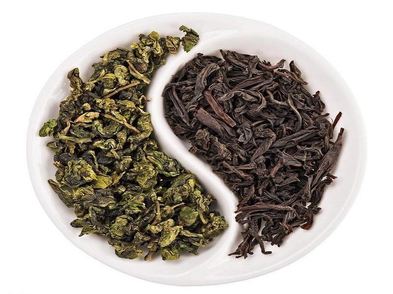 Bạn nên uống trà xanh và trà đen để hỗ trợ quá trình điều tri viêm nha chu