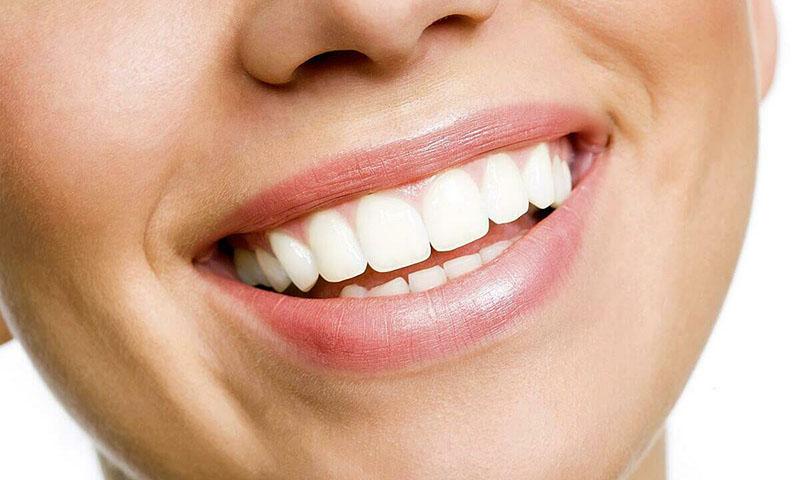 Răng là một phần phụ cứng nằm trong khoang miệng, có chức năng chính là nghiền và xé thức ăn