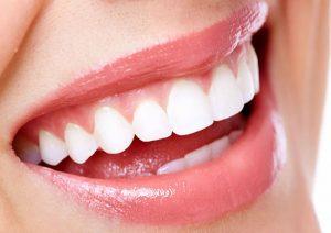 Trong khoang miệng, nướu răng đóng vai trò đặc biệt quan trọng